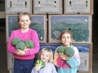 the children with cauliflower boxes ready for transport
