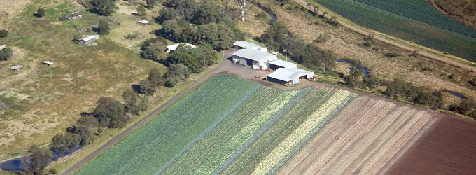 Aerial view of Mt Whitestone Farms