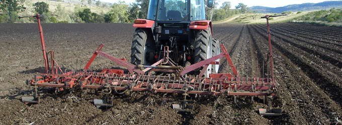 preparing the soil with a triple K cultivator